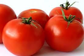 Molho de tomatebásico